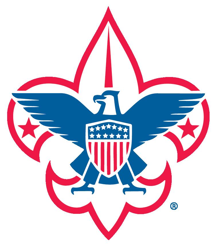 BSA National Logo