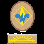 Webelos Arrow of Light patches