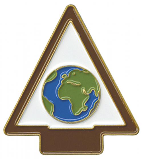 AOL Better World Pin Image