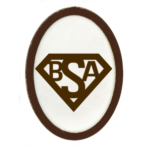 Webelos and Arrow of Light Build My Own Superhero Elective Adventure Pin