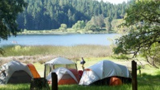 Family camping tents pitched by the lake shore
